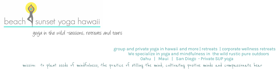 Beach sunset yoga hawaii yoga hikes wellness yoga for Wellness retreat san diego